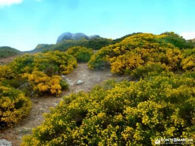 Siete Picos[Serie clásica]:Sierra del Dragón;puente de san isidro viajes octubre rutas senderismo